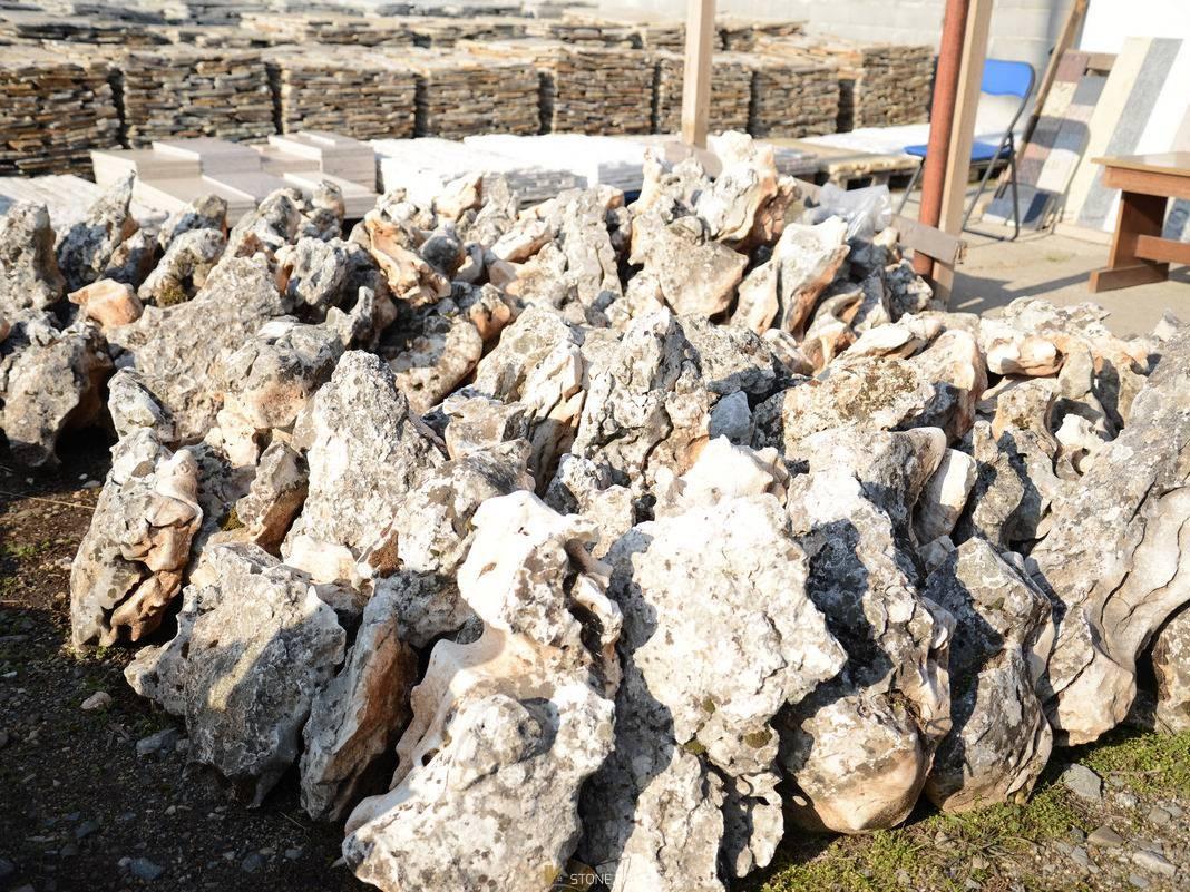 Decorative sea stone